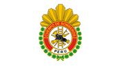 BOMBEROS DEL PERU